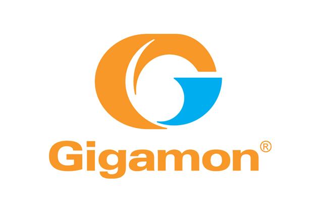 Logo for Gigamon